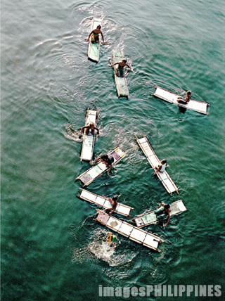 """Coin Divers, Manila Pier""