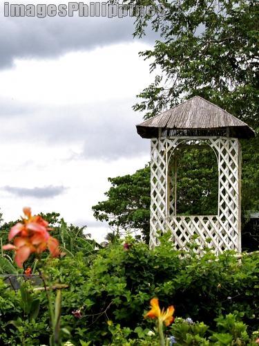 """""""White Kubo"""",  Place Taken: Cavite take on  Date Taken: 2008"""