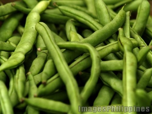 """String Beans"", 