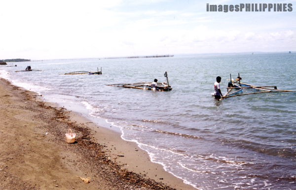"""Fishermen fishing for fingerlings""