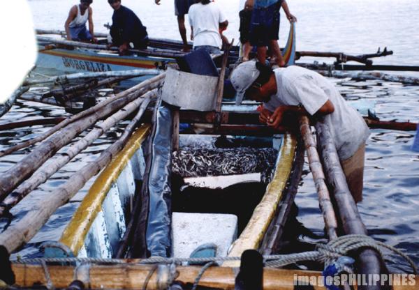 """""""Fishermen returning from the sea"""",  Place Taken: Balayan Bay, Batangas take on  Date Taken: 2003"""