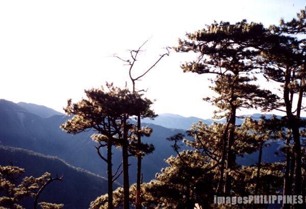 """""""High Peak, Mt. Tapulao"""",  Place Taken: Santa Cruz, Zambales take on  Date Taken:  2002"""