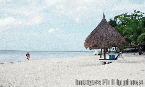 """Panglao Island Resort"", 