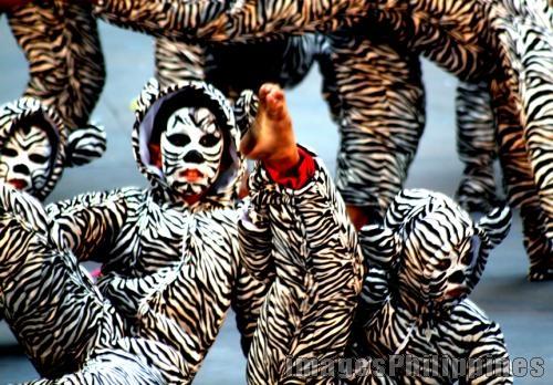 Caracol Tigers,  Place Taken: Metro Manila take on  Date Taken: 2010