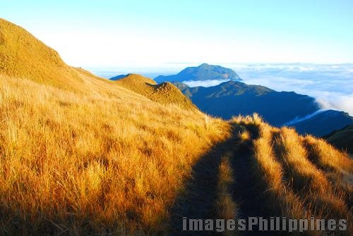 """Mount Pulag Grassland 4"", 