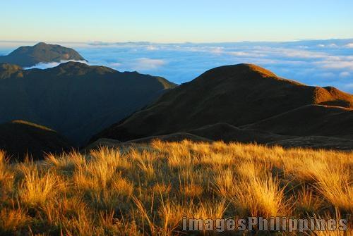 """""""Mount Pulag Grassland """",  Place Taken: Benguet take on  Date Taken: 2009"""