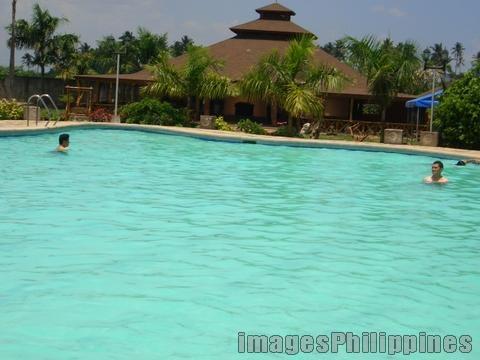 """""""Royal Palm's Serenity"""",  Place Taken: Laguna take on  Date Taken: 2005"""