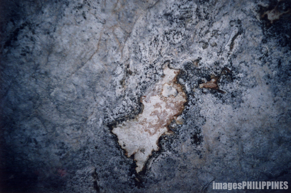 """""""Cat on the Stone Wall inside Sumaguing Cave"""",  Place Taken: Sagada, Mountain Province take on  Date Taken: 1999"""