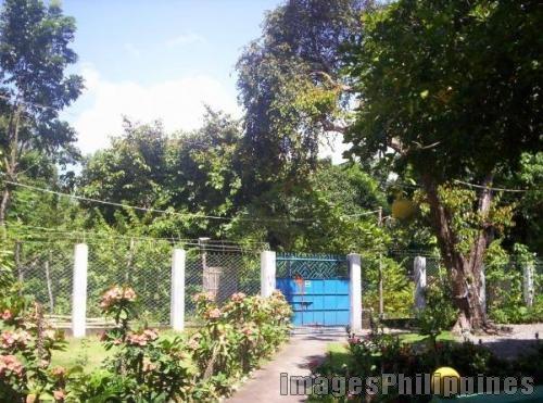 """Lolas Garden"",  Place Taken: Iloilo take on  Date Taken: 2009"