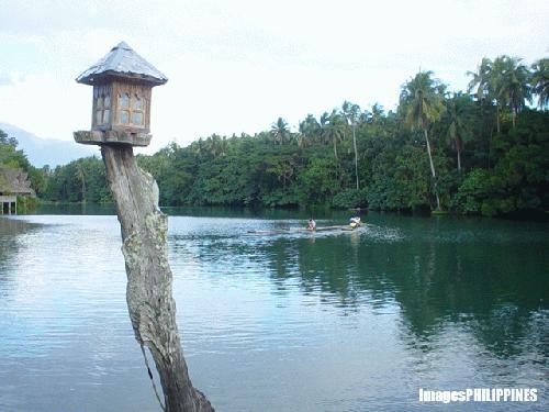 """""""Lamp of the Lake"""",  Place Taken: Laguna take on  Date Taken: 2003"""