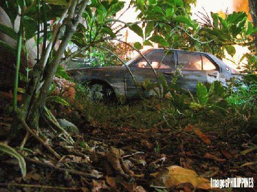 """Urban Jungle"",  Place Taken: Davao take on  Date Taken: 2003"