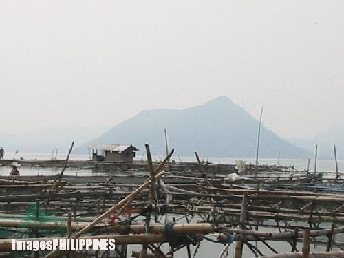 """""""Palaisdaan"""",  Place Taken: Batangas take on  Date Taken: 2004"""