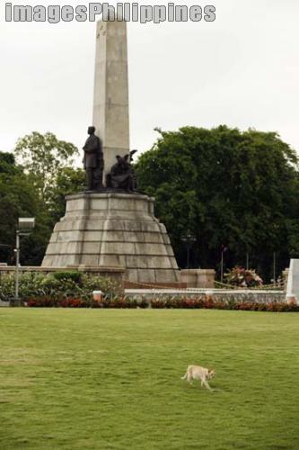 """""""Cat in the Rizal Park"""",  Place Taken: Metro Manila take on  Date Taken: 2009"""