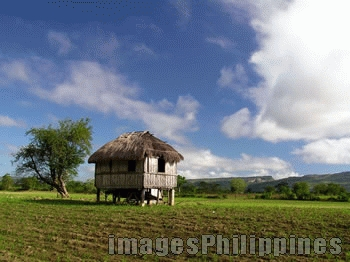 """""""Bahay kubo with callao mountains at the back"""",  Place Taken: Tuguegarao, Cagayan take on  Date Taken: 2004"""