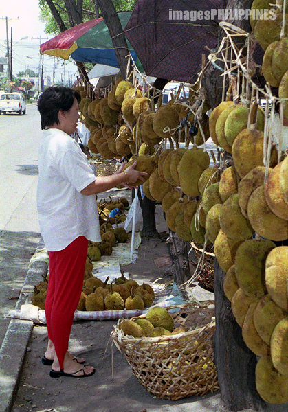 """Choosing the Good One"",  Place Taken: Davao take on  Date Taken: 2002"
