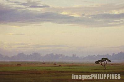 """""""Untitled"""",   take on  Place Taken: Pampanga"""