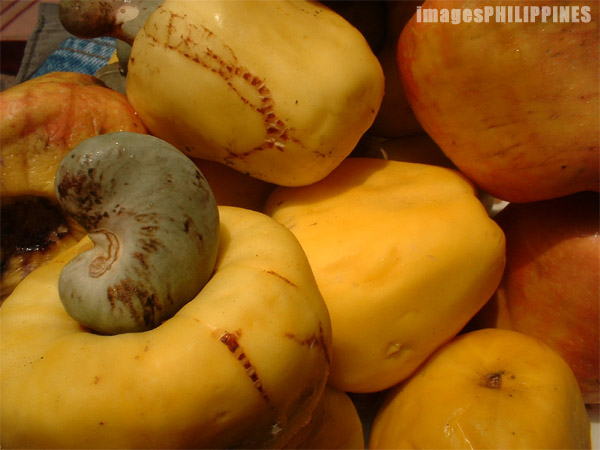 """Cashew"", 