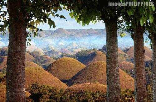 """""""Chocolate Hills"""",  Place Taken: Bohol take on  Date Taken: 2002"""