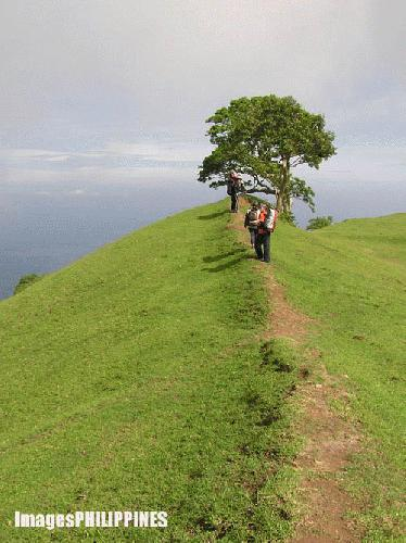 """Gulugod Baboy Trail"" , 