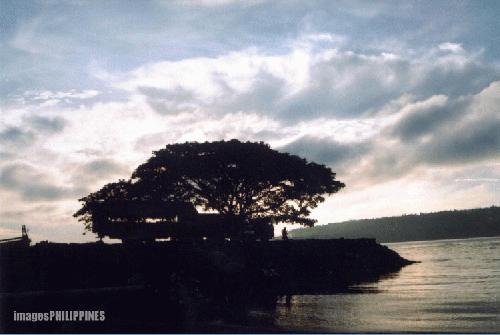 """Sunrise at Paradise Pier (1)"", 
