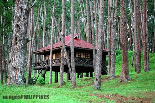 """A Resthouse in the Park"", 
