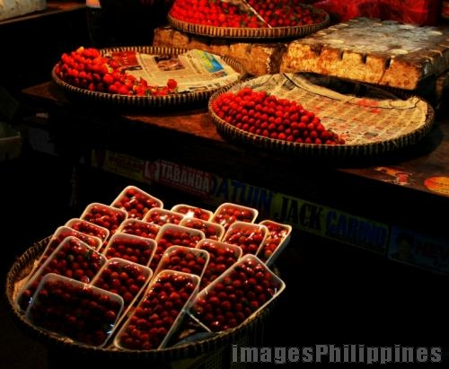 """Strawberries for Sale"", 