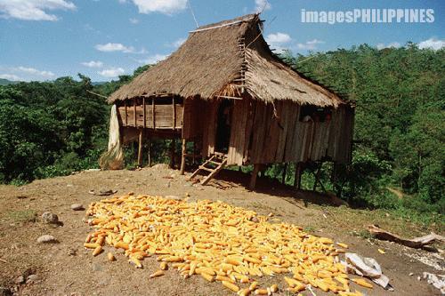 """Lumad House in Maraging"",  Place Taken: Malaybalay, Bukidnon take on  Date Taken: 2004"