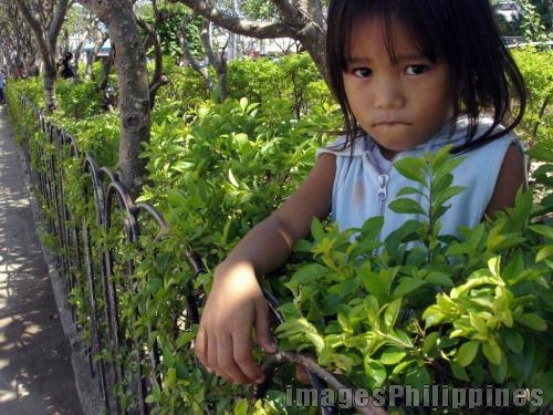 """urban greens (kadayawan 2005)"", 