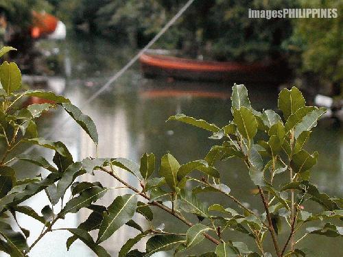"""""""Estero"""" ,  Place Taken: Metro Manila take on  Date Taken: 2003"""