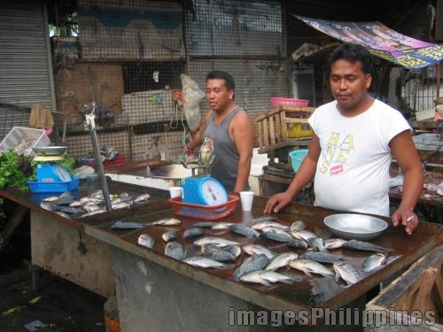 Live Tilapia Vendors, 