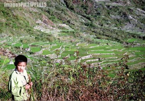 """""""Sagada Kid"""" ,  Place Taken: Mountain Province take on  Date Taken: 2003"""