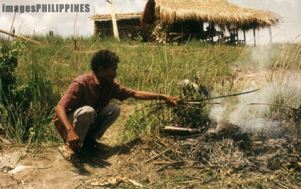 �Aeta man cooking camote in bamboo�