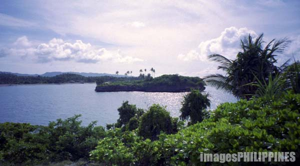 �Crocodile Island�