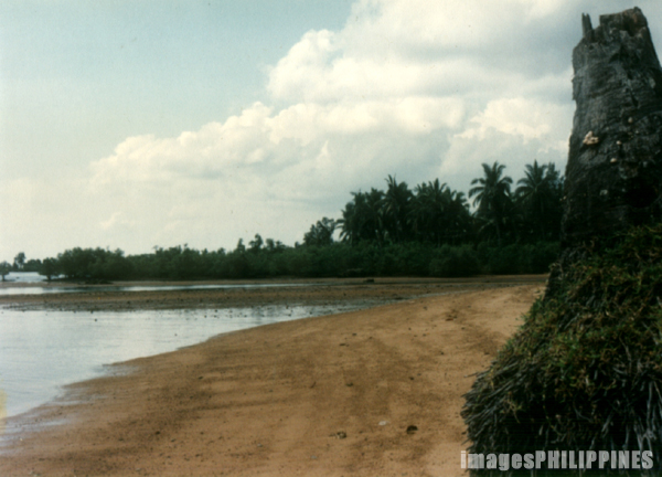 �Beach�