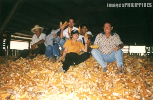 �Corn Harvest�,  Place Taken: Bukidnon take on  Date Taken: 2001