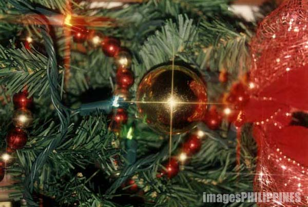 """""""Christmas Tree"""",  Place Taken: Metro Manila take on  Date Taken: 2000"""