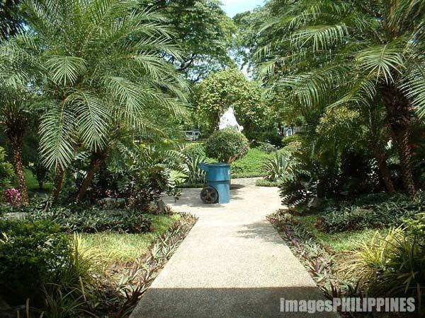 """Garden"",  Date Taken: 2002 take on  Photographer/Artist: Mike Torres"