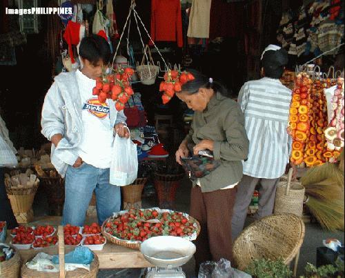 """Strawberry vendor near MInes View Park"",  Place Taken: Baguio City take on  Date Taken: December 2003"