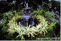 """Fort Santiago Fountain"", Photographer/Artist: Nestor Santiago, Date Taken: 2002, Place Taken: Metro Manila"