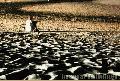 """Boy in a Night Beach"", Photographer/Artist: Willy Lorenzana, Date Taken: 2004, Place Taken: Batangas"