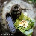 """Binalot"", Photographer/Artist: Samuel Peralta De Leon, Date Taken: 2001, Place Taken: Laguna"