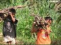 """Itbayan Working Kids"", Photographer/Artist: Ferdinand L. Decena , Date Taken: 2004, Place Taken: Batanes,"