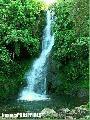 """towsuban falls"", Photographer/Artist: Sidney Mi�oza Nanini , Date Taken: 2004, Place Taken: Magpet,North Cotabato"