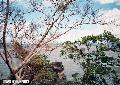 """Cielito Lindo View"" , Photographer/Artist: Ferdinand L. Decena , Date Taken: 2004, Place Taken: Rizal,"