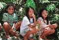 """Lumad Girls Watching"",