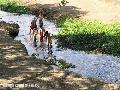 """Kids by the river"",