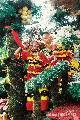 NCCC - first place floral parade (big floral float category),