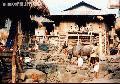 """A Village in Kalinga"", Photographer/Artist: Art Pang-ot Tibaldo , Date Taken: 1993, Place Taken: Bugnay, Tinglayan Kalinga"