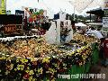 """Biggest Tossed Salad"",