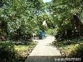 """Garden"", Ateneo de Manila High School, Photographer/Artist: Mike Torres, Date Taken: 2002, Place Taken: Metro Manila"